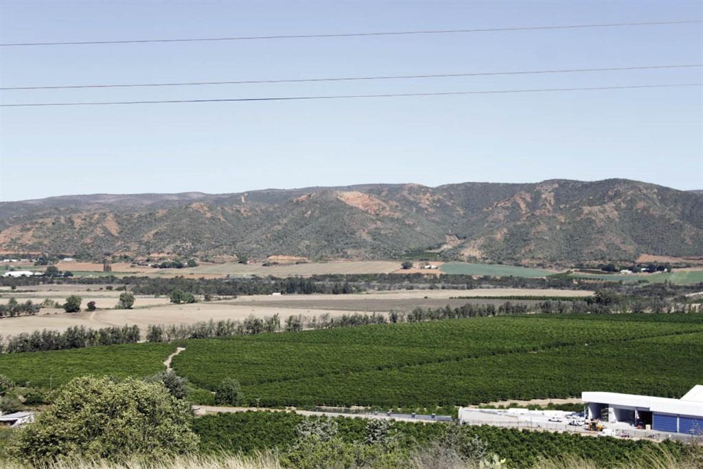 Droë groentelande tussen sitrusplantasies onlangs in die Gamtoosvallei. FOTO: FREDALETTE ?UYS