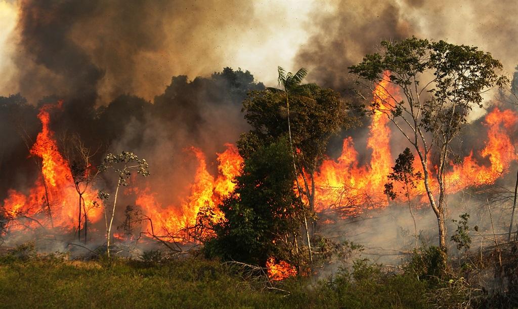 News24.com | Bosveldbrande in Brasilië plaas kollig op ontbossing Boeing sien rekord van 737 MAX: kyk na die wêreld se beste nuus vir vandag