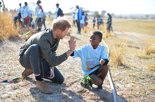 Prince Harry plants trees in Chobe National Park in Botswana. (Photo: Getty Images)