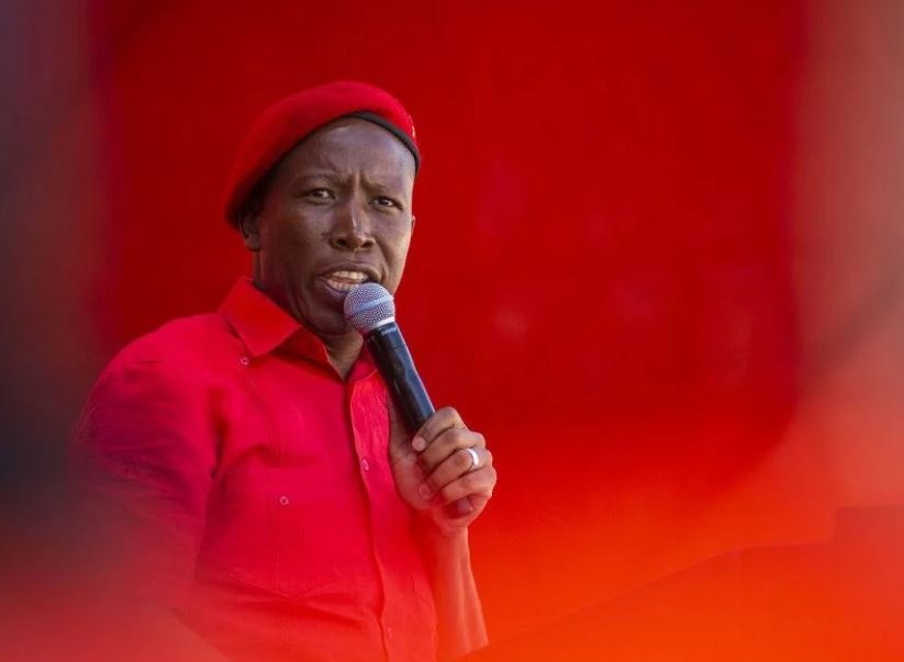 EFF leader Julius Malema. (Getty Images)