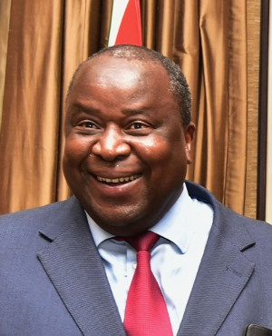 Tito Mboweni after being sworn in as finance minis