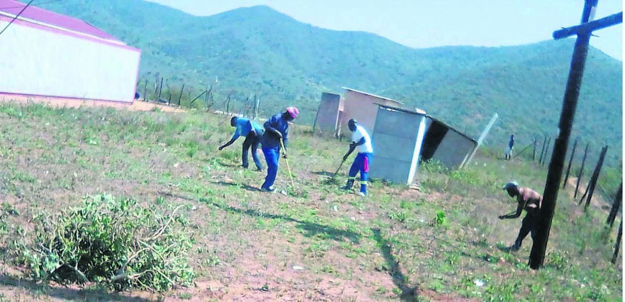 photo: supplied Offenders participating in a clean-up campaign held at KwaNgcolosi Tribal Court.