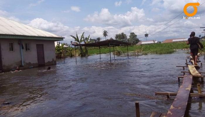 flood takes over rice farm