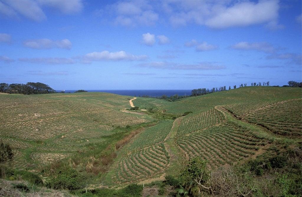 KwaZulu Natal, Ingonyama Trust land.