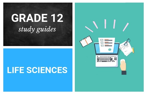 Grade 12 study guides: Life Sciences | Parent24