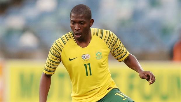 Image result for bafana bafana