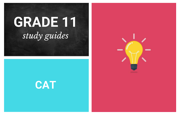 Grade 11 study guides: Computer Applications Technology
