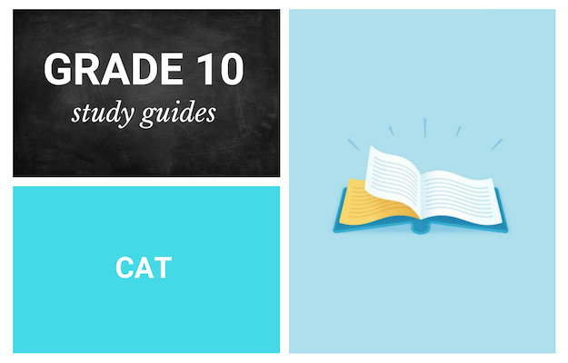 Grade 10 study guides: Computer Applications Technology