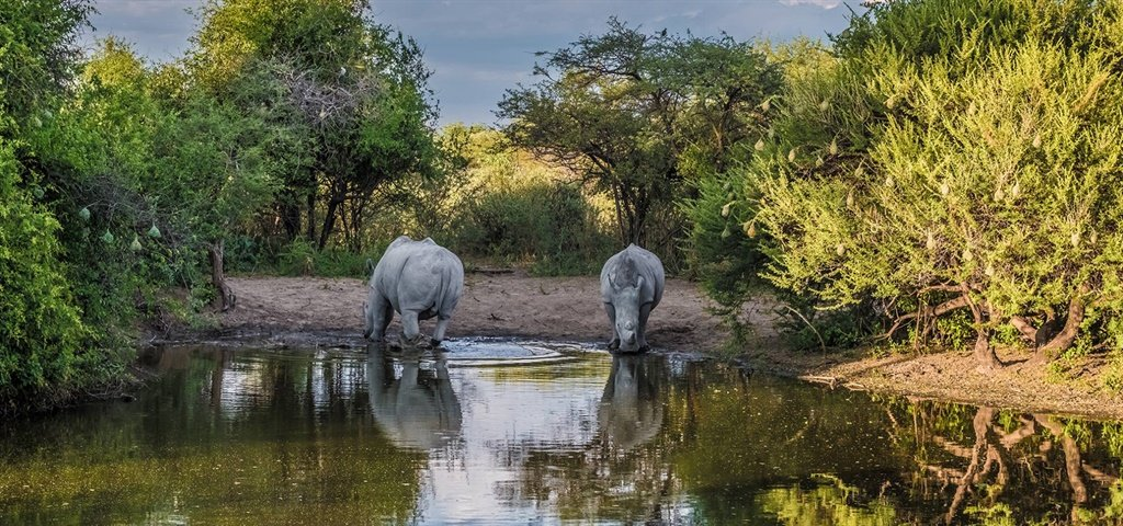 FlightSite safari deals for Botswana