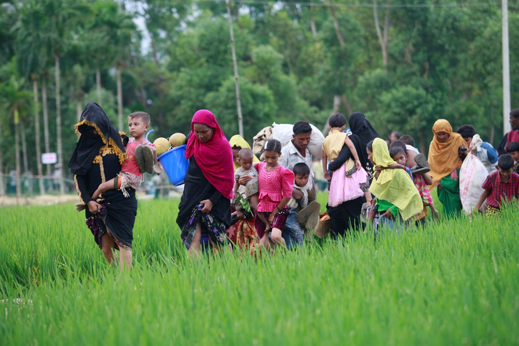 Hundreds of thousands of Rohingya Muslims have fled from Myanmar into Bangladesh.