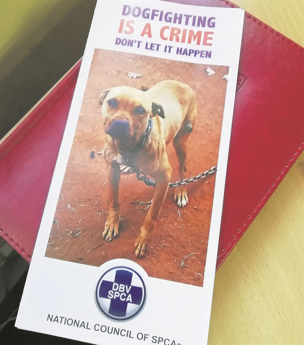 Flyers regarding dog fighting that will be distributed by SAPS.PHOTO: Purnal Poonusamy