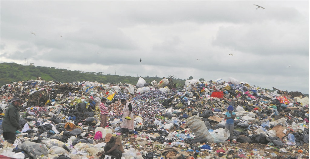 Waste pickers dig through one of the heaps of uncompacted rubbish at the New England Road landfill site.