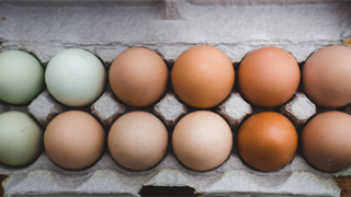 8 office kitchen behaviours South Africans are getting wrong – including eating eggs