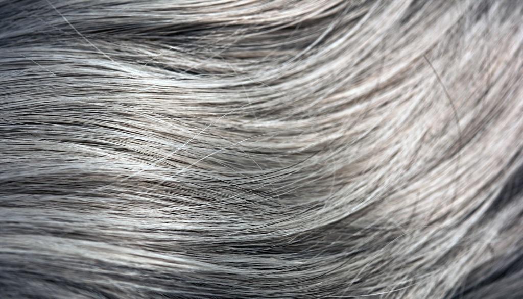 horizontal shot of gray straight hair, shiny and h