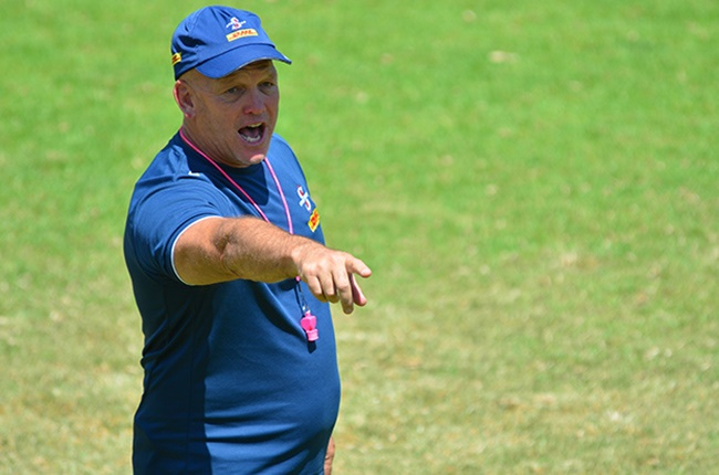 2 Stormers squads to contest 'Covid Cup' at Newlands - News24