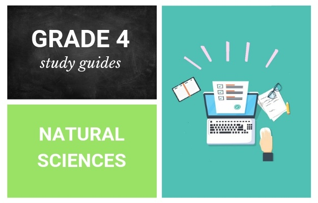 Grade 4 Study Guides: Natural Sciences And Technology