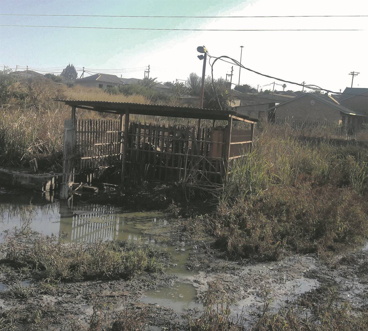 The Thaba Chweu municipality in Mpumalanga is facing a variety of problems, including ineffective sewerage systems, as shown in this picture of an overflowing sewage plant Picture: Sizwe sama Yende