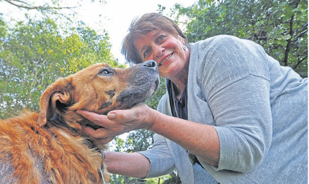 Rio meets his new owner Rosemarie du Toit after he was adopted at the SPCA on Tuesday.
