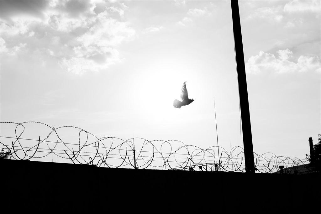 A fence outside a prison.