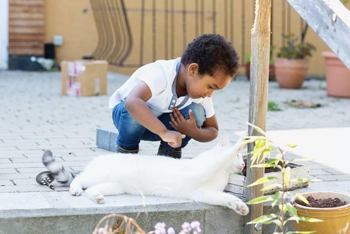 Imaginative play is a fundamental developmental process