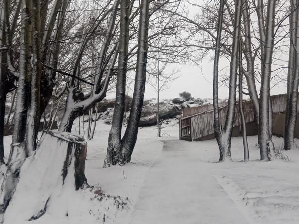 sneeu,