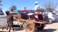 WATCH: Donkey cart driver demonstrates pro parking skills