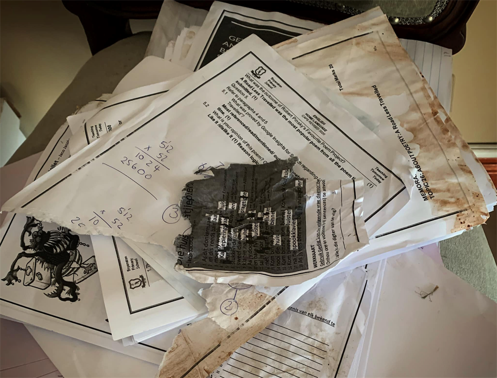 """The classic """"the dogs ate my homework"""" excuse became a reality for a Bryanston Primary School pupil."""