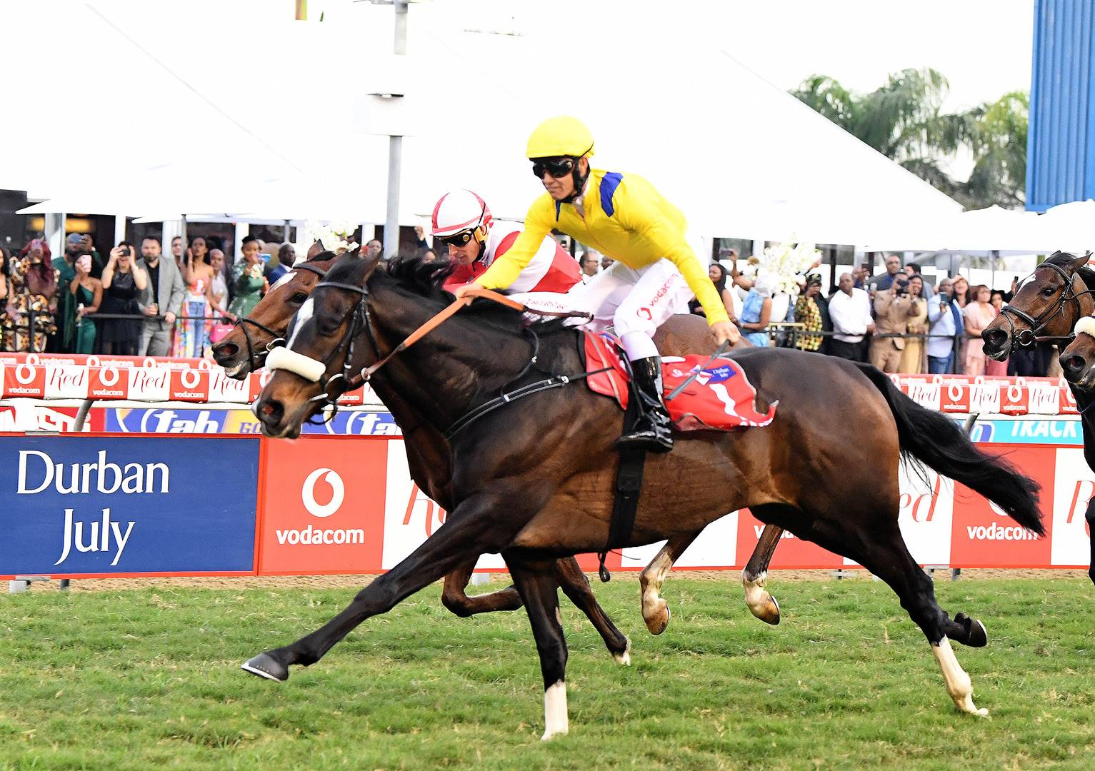 News24.com | Hold your horses! Council officials probed for using development funds for R170k Durban July joyride