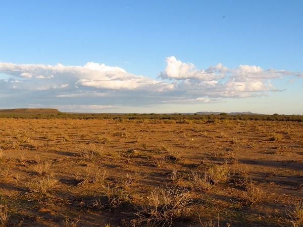 droogte, Noord-Kaap, Groot-Karoo