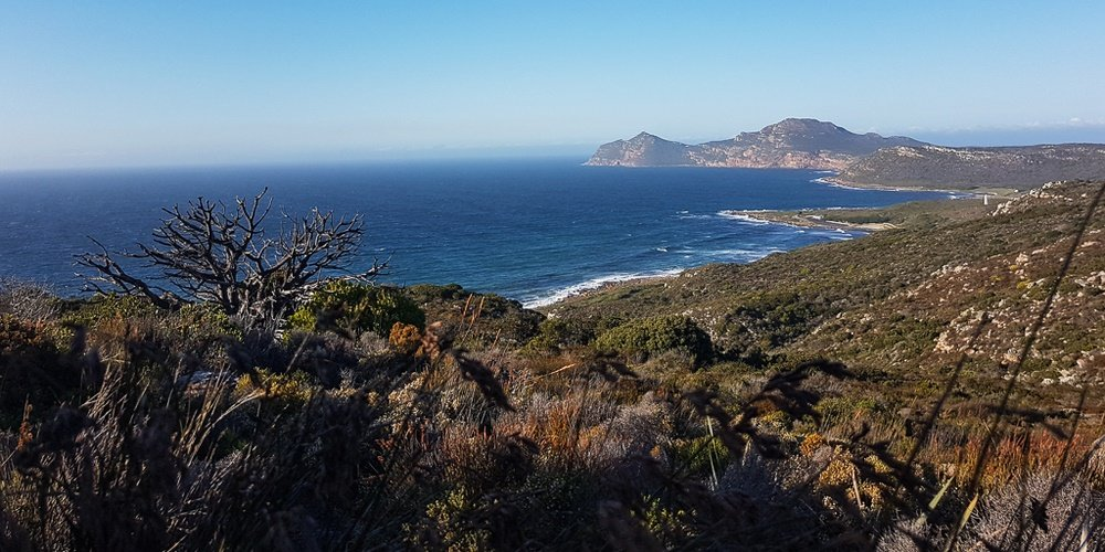 coastal view in cape point table mountain national