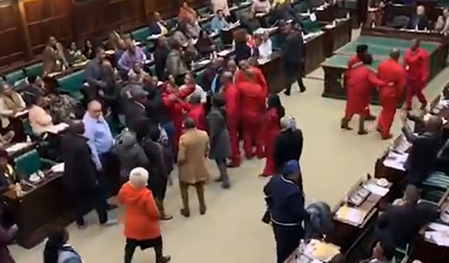 ANC and EFF MPs push and shove in the Old Assembly Chamber in Parliament. (Screengrab)