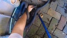 WATCH: Durban family finds 2.3m black mamba at sliding door