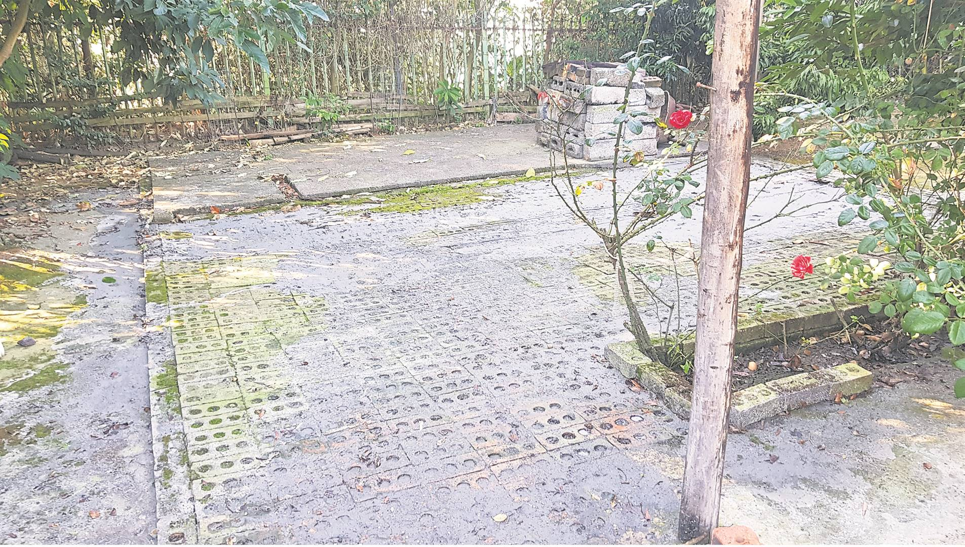 The aftermath of the municipality's efforts to remove sewage waste from the Padayachee's yard. The yard is now covered in sewage residue after the manhole erupted during the removal process. PHOTO: byrone athman