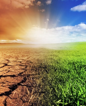 Climate change (Shutterstock)