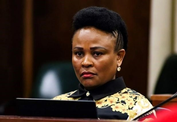 Public Protector vs Parliament: Removal of office bearer ultimate form of accountability, court hears - News24