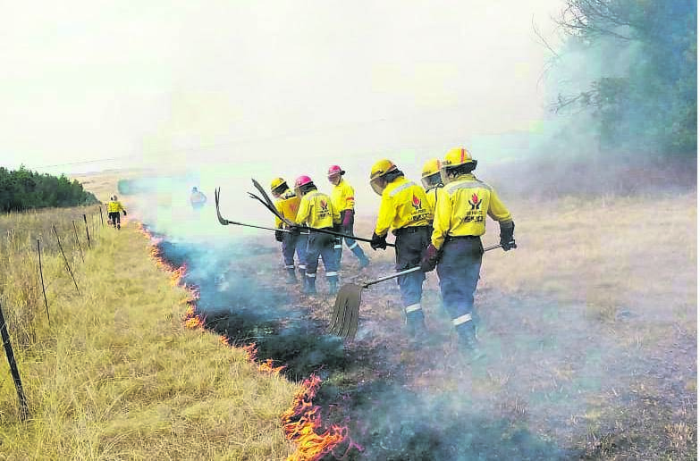 KwaZulu-Natal Working on Fire firefighters help with fire breaks at a farm. PHOTO: working on fire