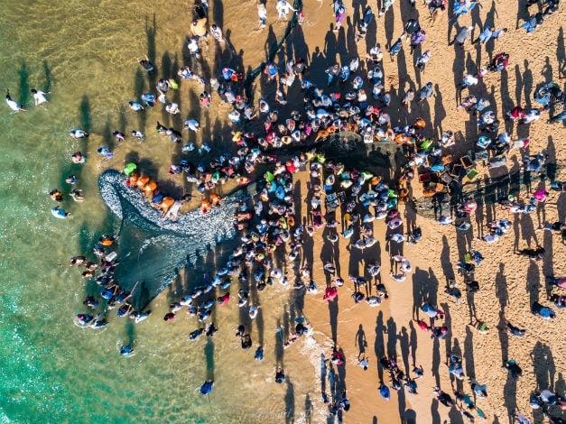 2019 sardine run in KwaZulu-Natal in full swing