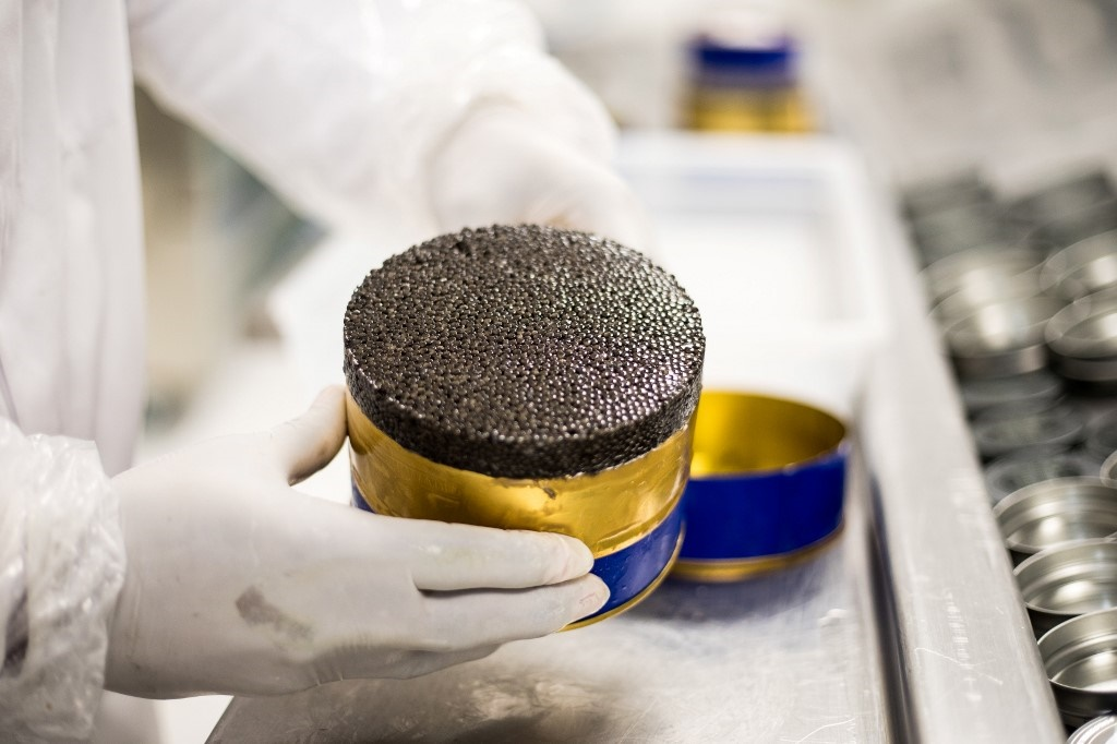 tin of caviar