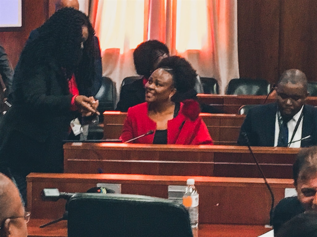 Public Protector Busisiwe Mkhwebane appears before the Portfolio Committee on Justice and Correctional Services. (Jan Gerber, News24)