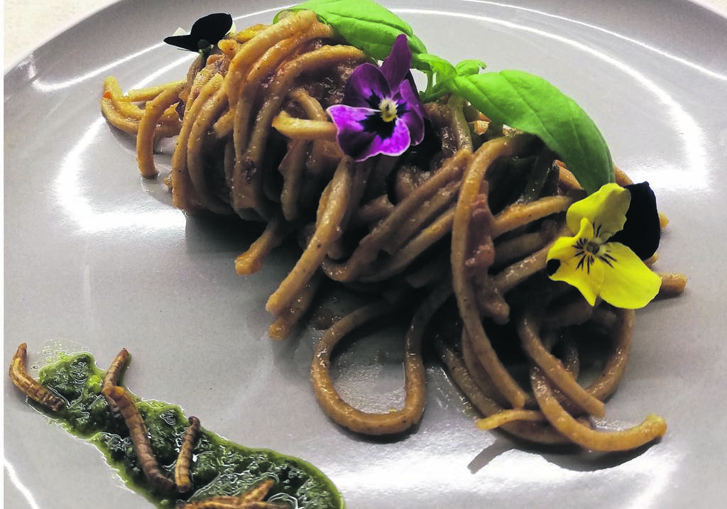 The Insect Experience in Woodstock serves food made of insects.
