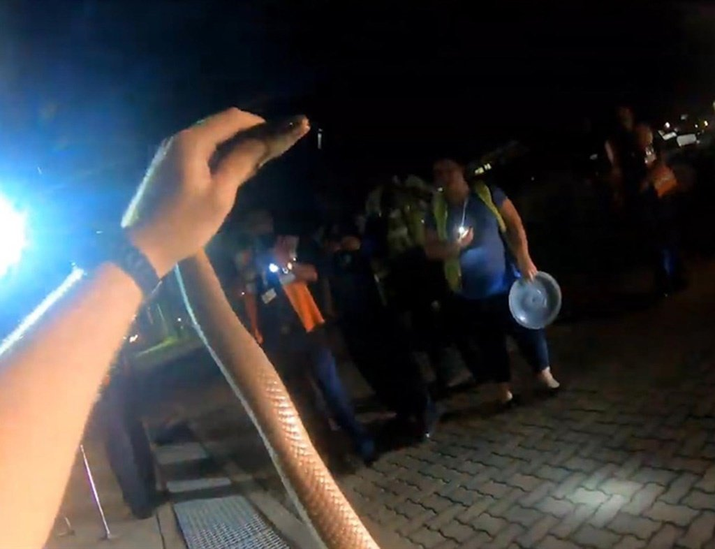 Snake rescuer Nick Evans was called out to King Shaka International Airport to rescue Mozambique spitting cobra.