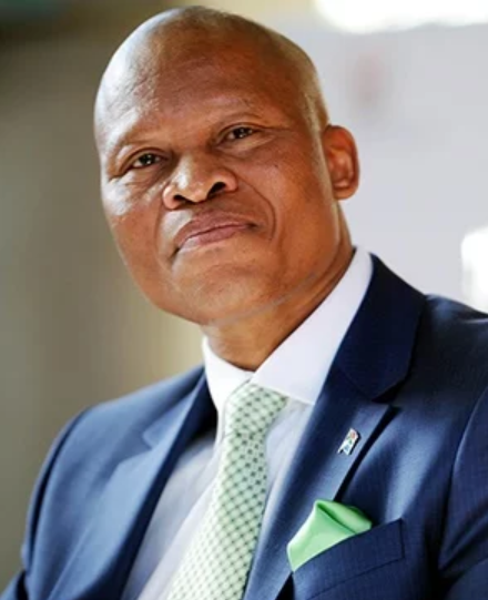 Chief Justice Mogoeng Mogoeng. (Photo: MARY-ANN PA