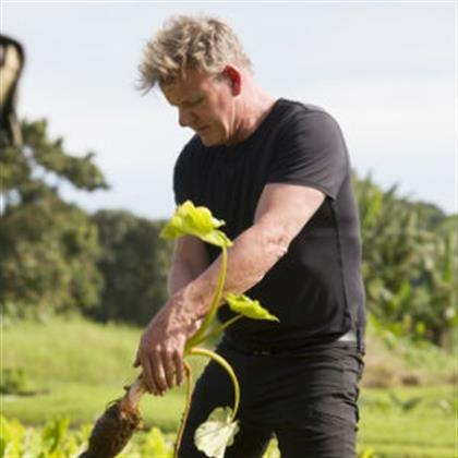5 Things to know about Gordon Ramsay's new show that airs this month