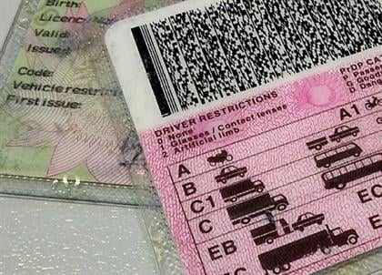 A driver's licence. (Duncan Alfreds, News24)
