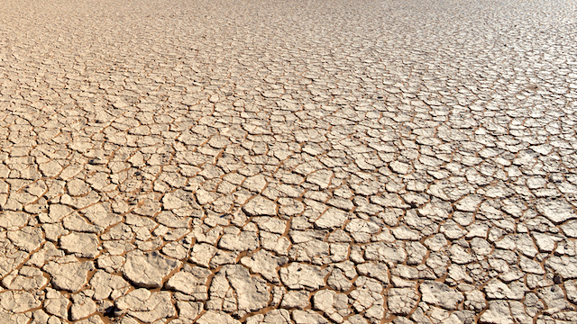 'Way beyond the urgency and emergency phase', Gift of the Givers 'battle' with worsening Eastern Cape drought - News24