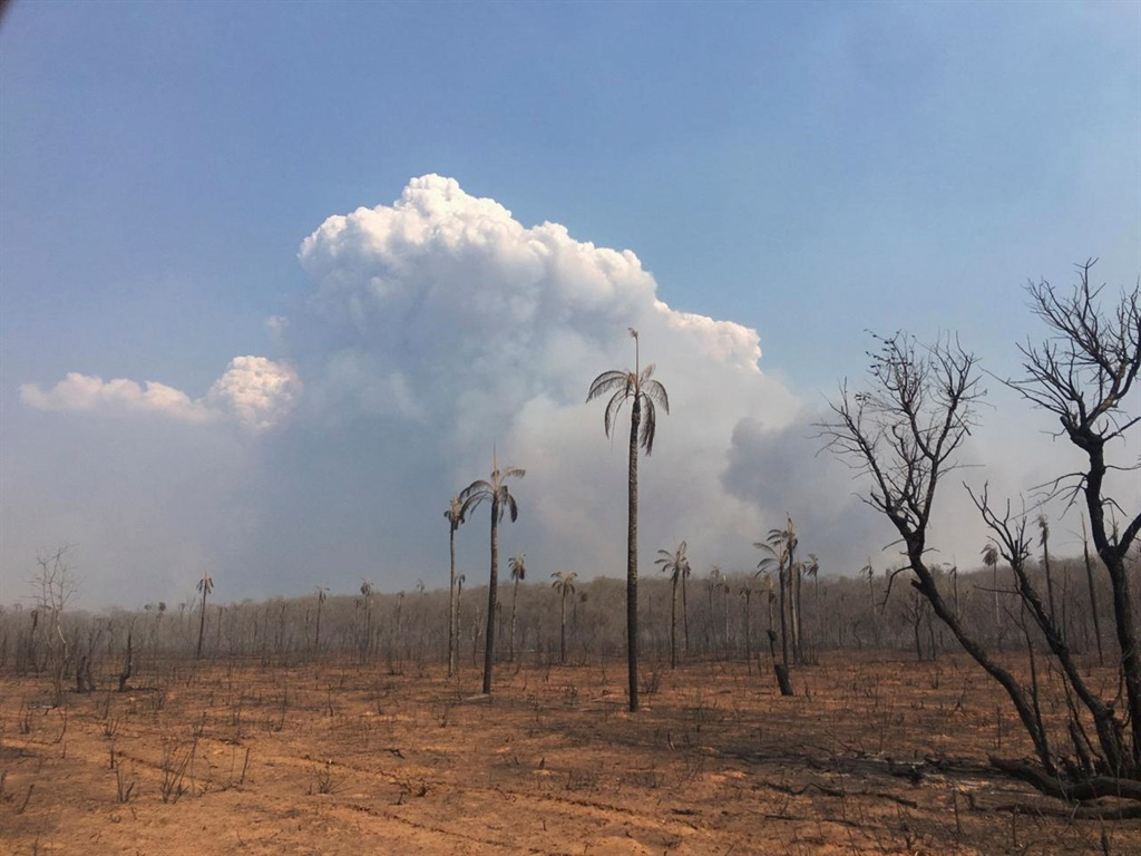 Handout picture released by Santa Cruz Government showing a general view of the fires at Bolivian Amazonian area of San Jose de Chiquitos in Santa Cruz. (STR, AFP)