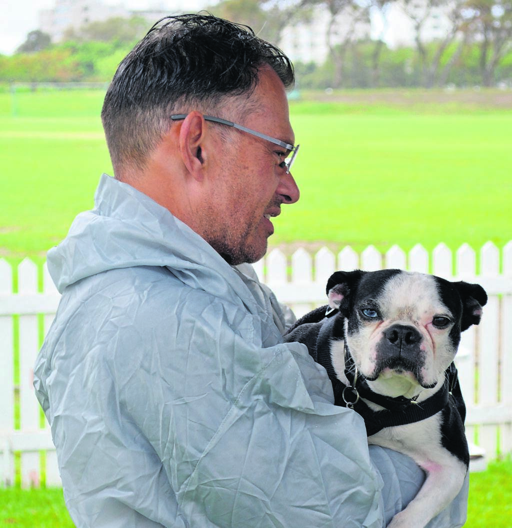 Richard Quintal with his Boston Terrier, Dexter, at the Cape Town Boston Meet. PHOTO: Angie Fullard