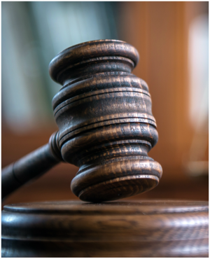 PE forex trader gets 15 years in jail for stealing R23m - Fin24