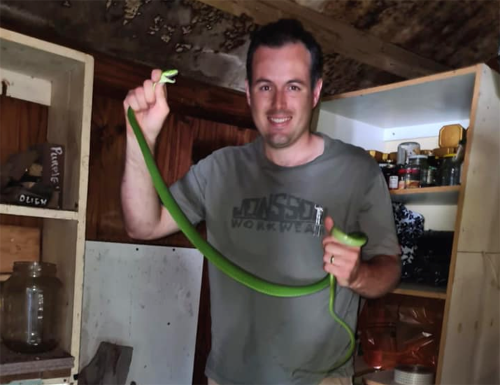 Nick Evans with the green mamba.