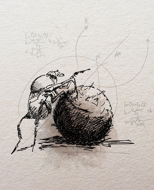 Dung beetles use different directional sensors to achieve navigational precision.